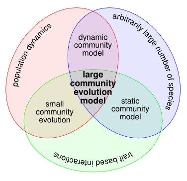 Large community evolution models
