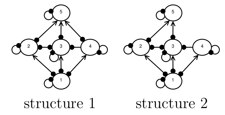 Network structural uncertainty in Qualitative Modelling